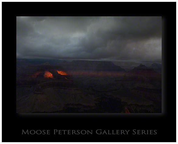 Grand Canyon 4559
