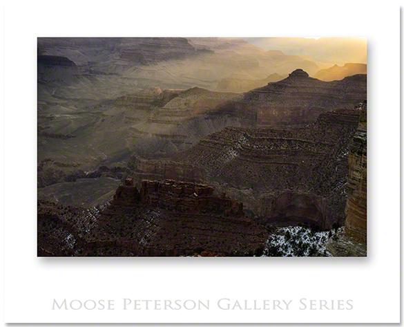 Grand Canyon 4595