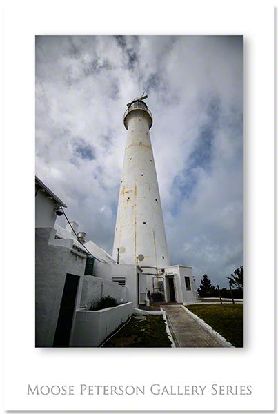 Bermuda 0621