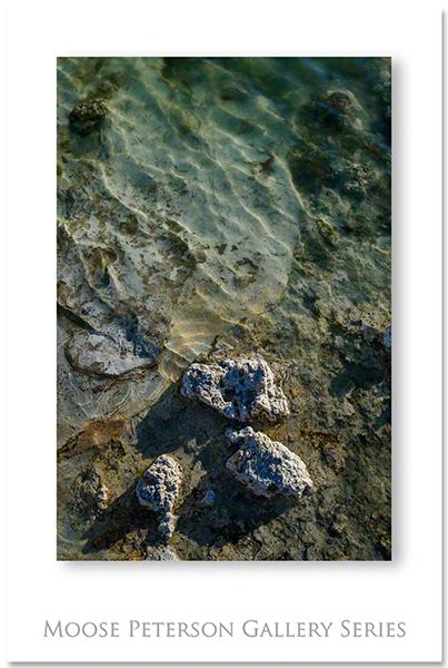 Mono Lake 5460