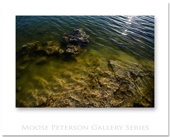 Mono Lake 5468