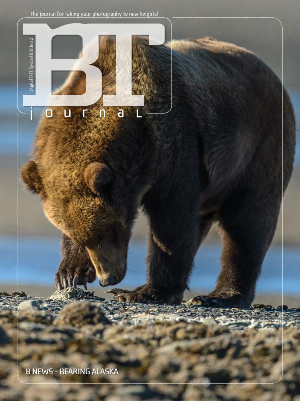DBTJ Special Edition 2