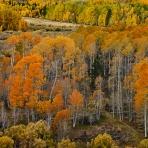 Rockies Fall Color Adventure