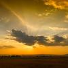 The Mara Landscape