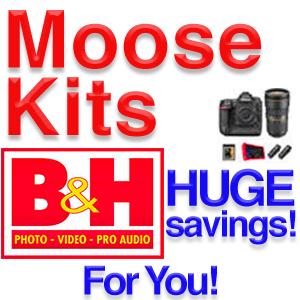 Moose Kits