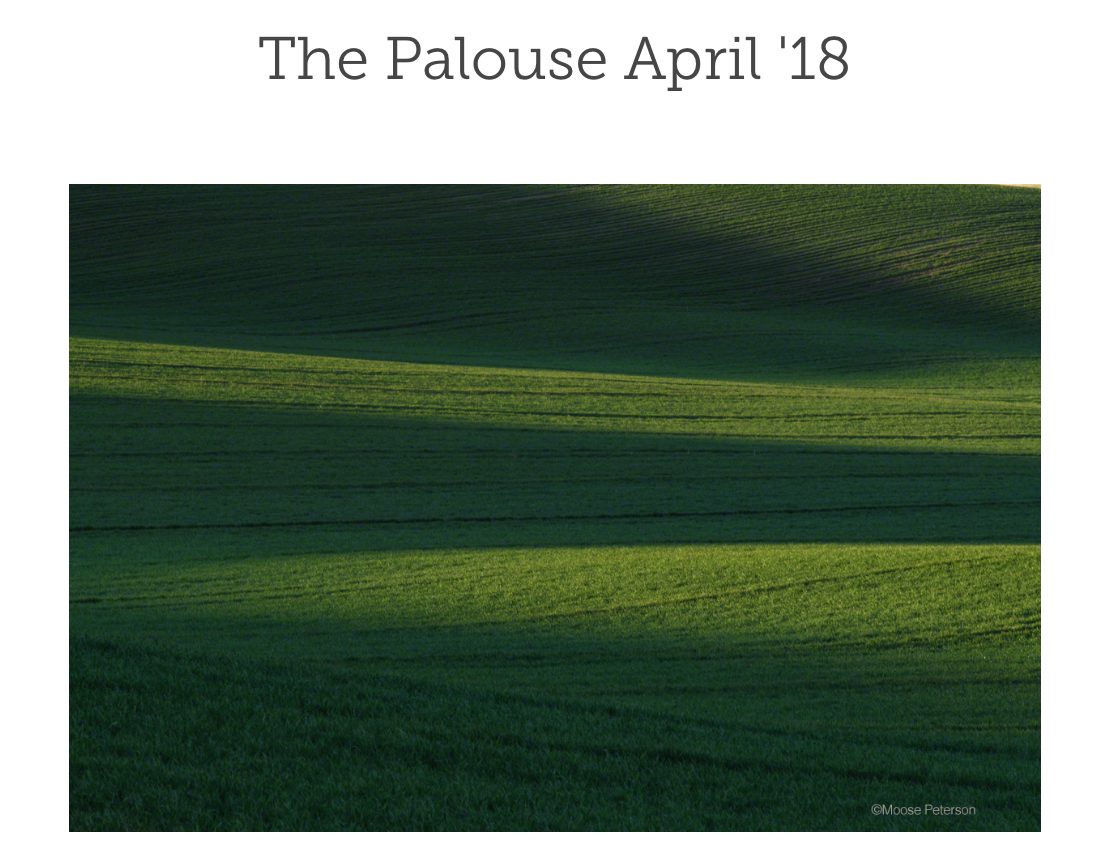 The Palouse Gallery