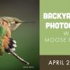 Precision Camera & Me – Backyard Bird Photography Online Seminar
